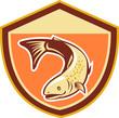 Trout Swimming Down Shield Retro