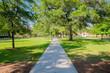 College campus - 64965392