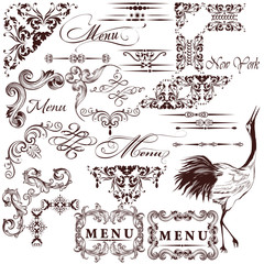 Vector set of calligraphic vintage elements for design