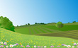 landscape meadow - 64968569