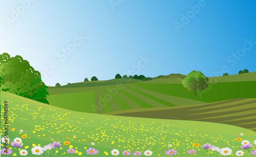 landscape meadow - 64968569