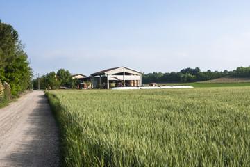 Cascina in campagna