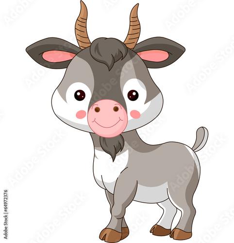 obraz PCV Zwierzęta gospodarskie. Koza