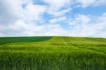 Landschaft Landwirtschaft