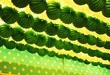 Farolillos verdes y blancos en la caseta de Feria