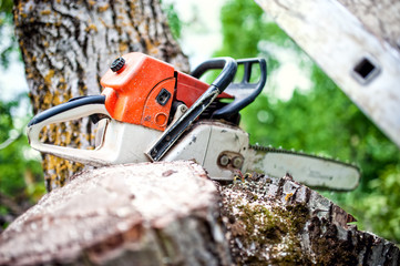 professional chainsaw on pile of fresh cut wood or timber