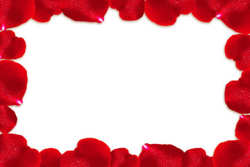 Red rose petals frame.