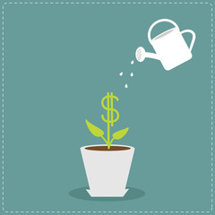 Dollar plant in the pot and watering can. Financial growth conce