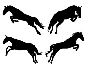 Black silhouettes of horses jumping, vector