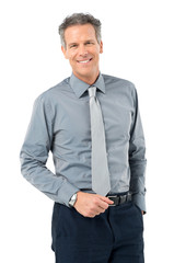 Happy Smiling Mature Businessman