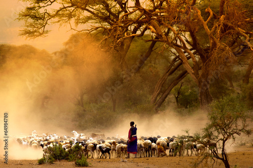 Tuinposter Overige shepherd leading a flock of goats