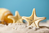 Starfish on sand and blue background