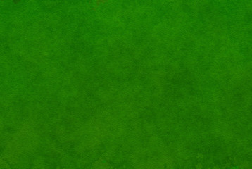 Top view of lush green grass texture