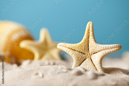 Fototapeta Starfish on sand and blue background