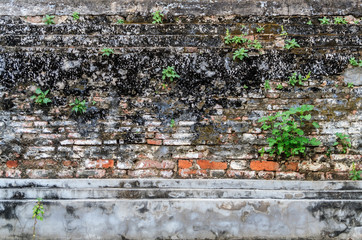 An antique wall of temple ruin at Ayutthaya province in Thailand