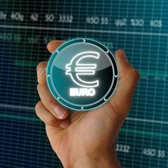 electronic data Euro icon