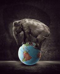 elephant on globe