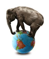 elephant balancing on globe