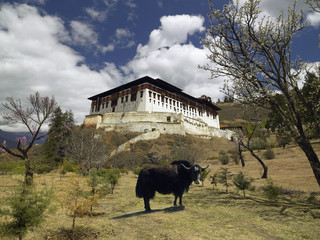 Paro Dzong - Kingdom of Bhutan