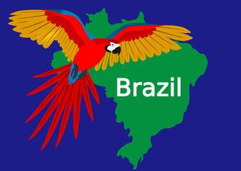 roter Ara Brasilien