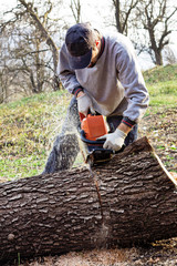 Young man cutting trees using an electrical chainsaw