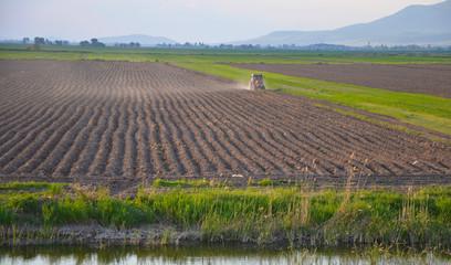 tarımsal faaliyetler
