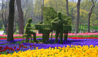 Music on Flowers Concept in Emirgan Wood,Istanbul