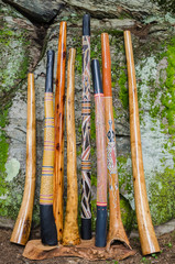 Collection of Didgeridoo's.