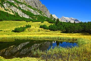 Hochgelegenes Bergbiotop