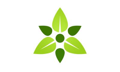 leaf plant decoration logo