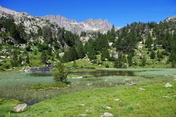 étang de montagne