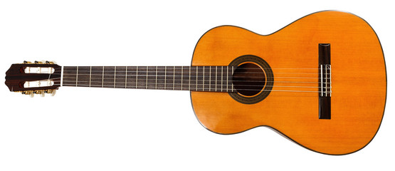 full view of prime acoustic guitar