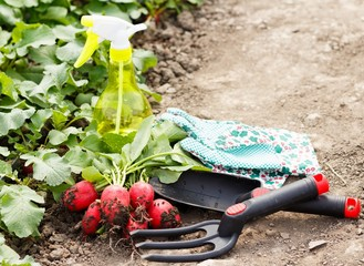 Gardening Works
