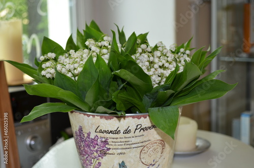 Papiers peints Muguet de mai Bouquet of lily of the valley