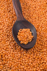 Orange lentils in red polished wooden spoon