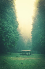 picnic table with vintage effect