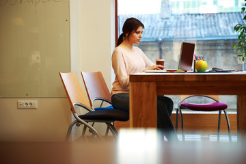 Young beautiful girl working at laptop in office