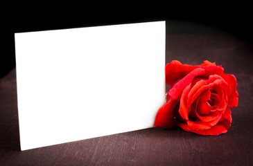 red rose and blank gift card for text on old wood background