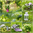Obrazy na płótnie, fototapety, zdjęcia, fotoobrazy drukowane : Gartenidylle - Collage