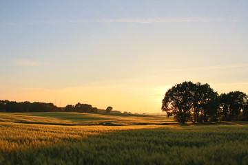 Toskanischer Sonnenuntergang in Mecklenburg-Vorpommern