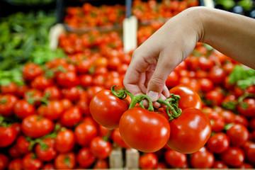 Pomodori italiani al mercato ortofrutticolo