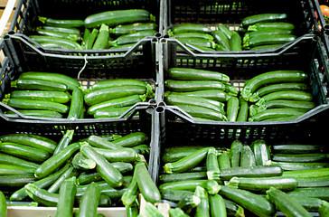 Zucchine verdi al mercato