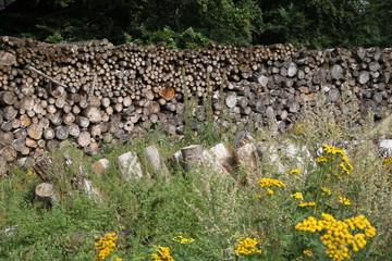 Große Menge Holz gestapelt
