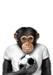 smartmonkey soccer isolated
