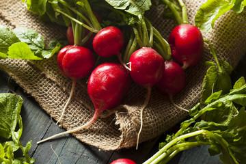 Organic Raw Red Radishes