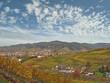 Schwarzwaldgemeinde im Herbst