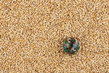 Glass globe lying on barley