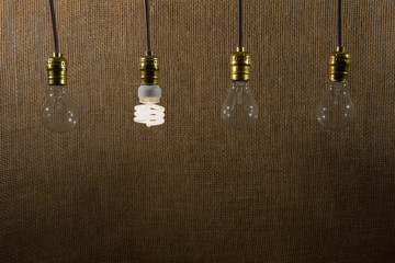 Hanging CFL and Incandescent Bulbs