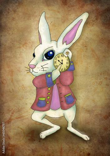 White Rabbit Alice - 65046797