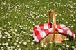 canvas print picture - picnic basket